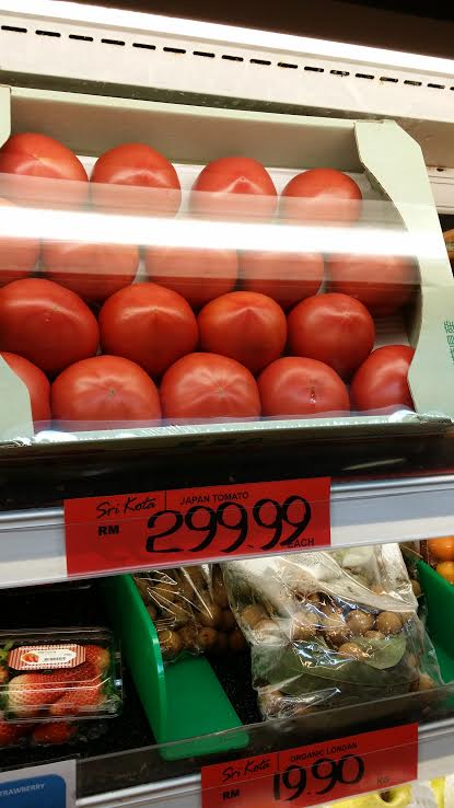 exp tomato 3
